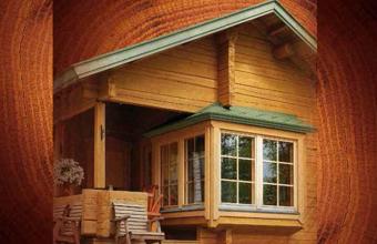Tratamente pentru protectia lemnului si a constructiilor de lemn